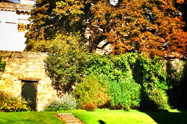 Cheshire Cat Tree and Alice's Door