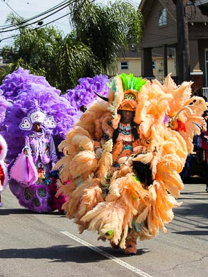New Orleans - Mardi Gras Parade