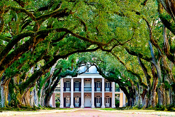 Oak Alley Plantation