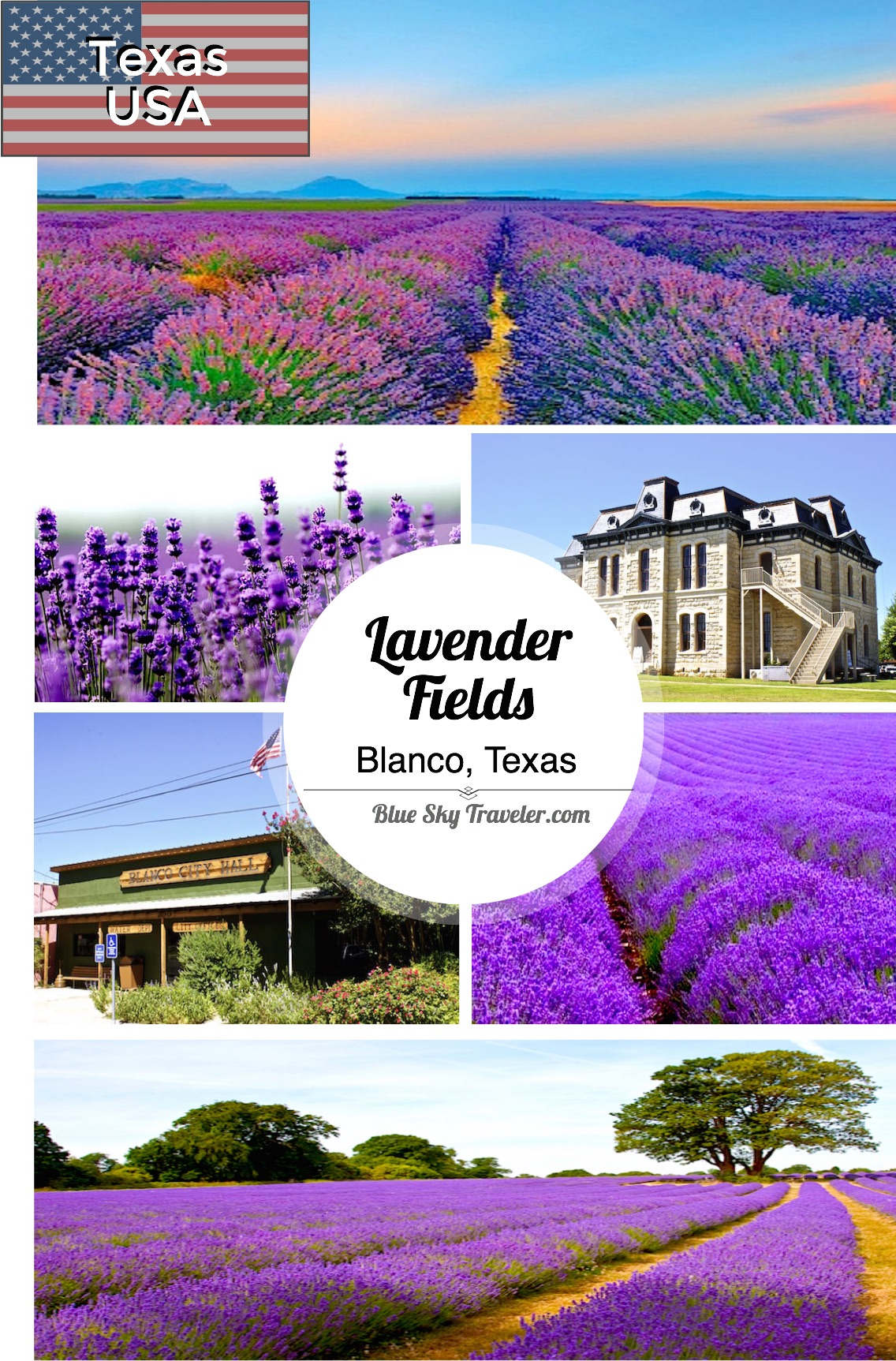 Texas Lavender Fields