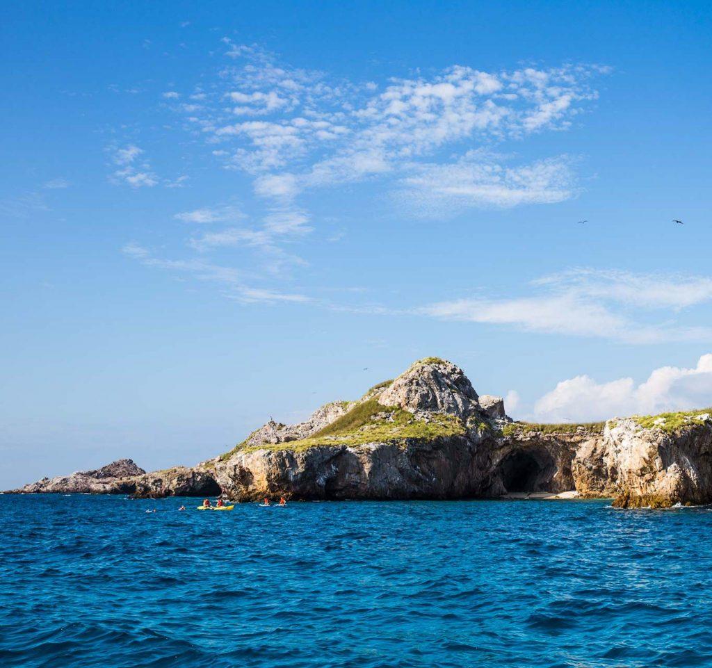 Marine Safari - Punta Mita Expeditions