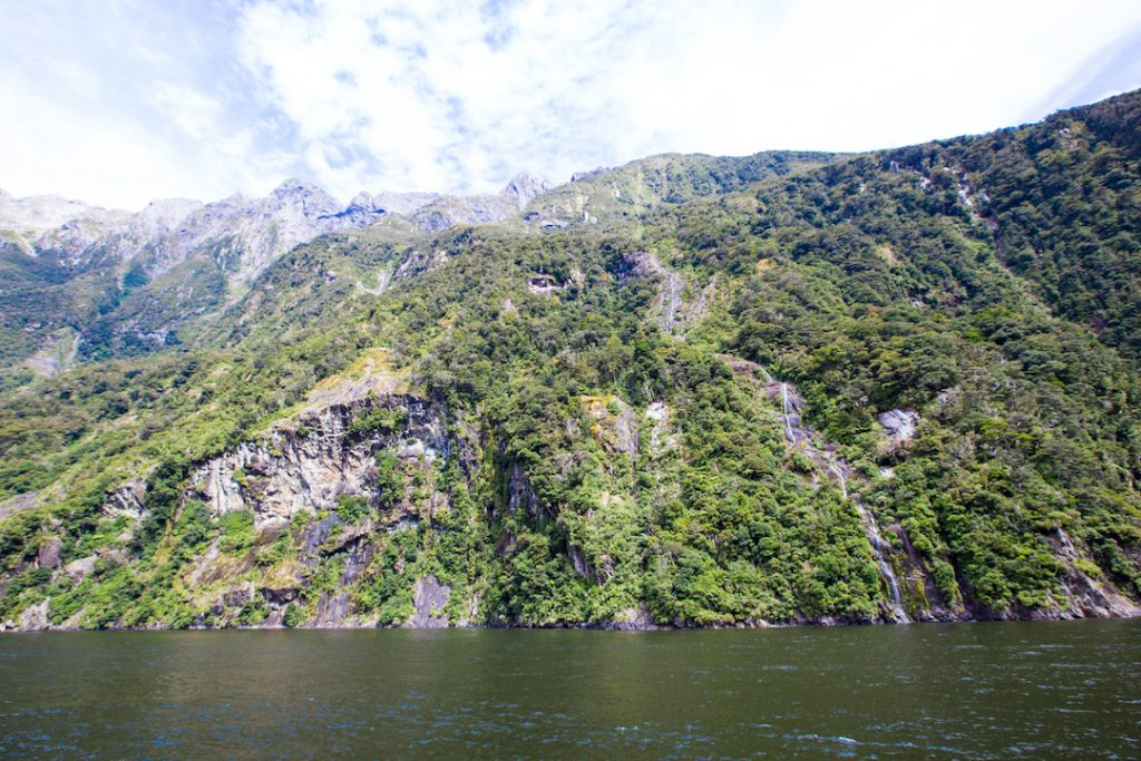 Cruising Milford Sound in New Zealand